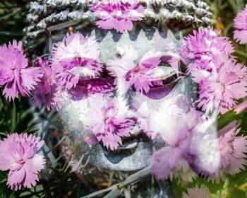 Будда в розовых цветочках
